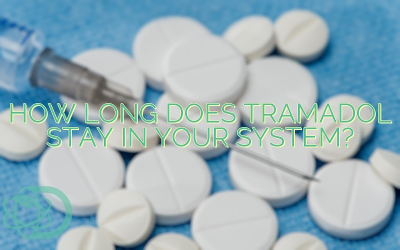 how long do tramadol stay in your system for